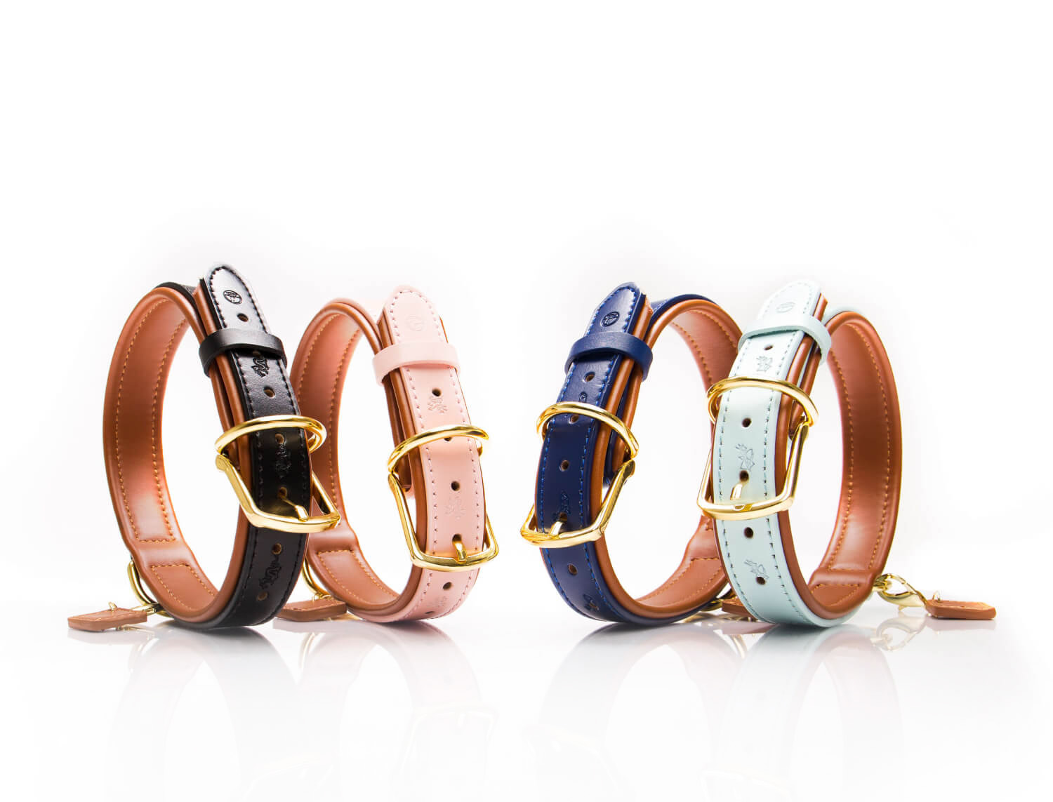Designer Dog Collar Collection - Canis Stellar